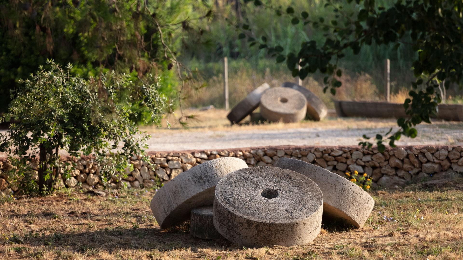 Struttura Masseria Mongiò