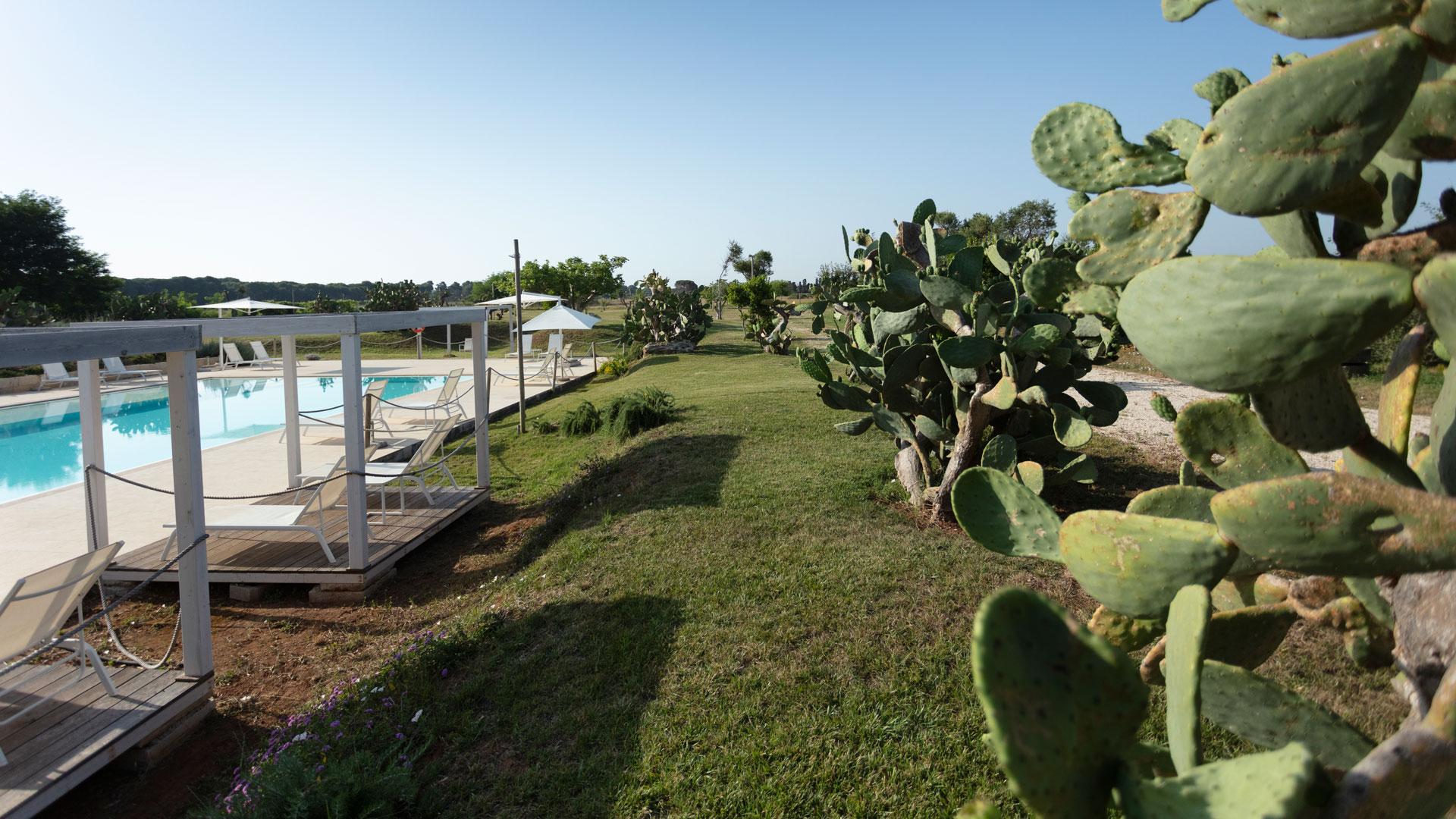 Masseria Mongiò con piscina